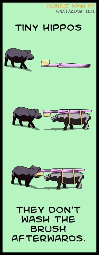 Tiny hippos brushing