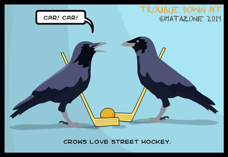 Crows love street hockey