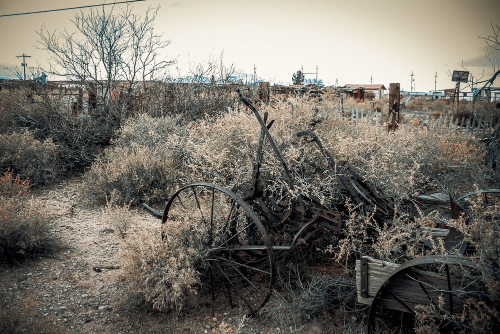 Photo: forgotten horse-cart, San Antontio, New Mexico